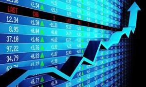 """""""Soi"""" top 10 cổ phiếu giảm mạnh nhất sàn HoSE một tháng qua"""