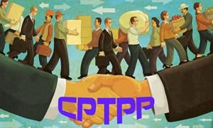 Tham gia CPTPP, các doanh nghiệp siêu nhỏ dễ hụt hơi nếu không được bảo hộ