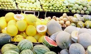 Kim ngạch xuất khẩu nông sản tại nhiều thị trường chủ lực bị sụt giảm