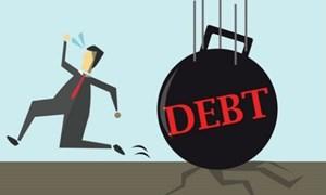 Nợ có khả năng mất vốn tăng nhanh