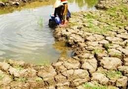 Bộ Nông nghiệp và Phát triển nông thôn: Tăng cường lấy và tích trữ nước phục vụ sản xuất