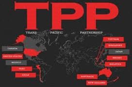 Các nước TPP cam kết lộ trình cắt giảm thuế quan với thủy sản Việt Nam