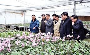 Quảng Ninh kêu gọi các doanh nghiệp đầu tư vào nông nghiệp