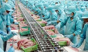 Giá cá tra, tôm sụt giảm mạnh