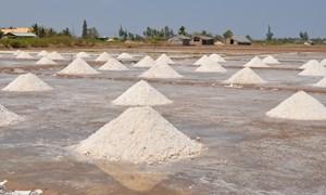 Lượng muối tồn kho lên đến hơn 850 nghìn tấn