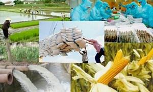 Ngành Nông nghiệp tiếp tục đẩy mạnh tái cơ cấu