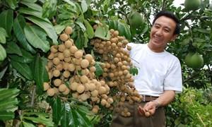 Xây dựng thương hiệu quốc gia cho nông sản là nhiệm vụ ưu tiên