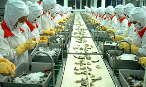 Kim ngạch xuất khẩu nông lâm thuỷ sản 10 tháng đạt 26,4 tỷ USD