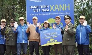 Hành trình Việt Nam xanh: trồng 2.500 cây gỗ bản địa tại tỉnh Thừa Thiên Huế
