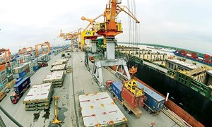 Xuất khẩu năm 2019: Nhiều dư địa tăng trưởng
