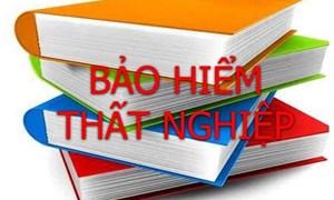 Thực trạng chính sách bảo hiểm thất nghiệp tại Việt Nam