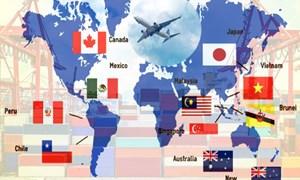 Doanh nghiệp xuất khẩu của Việt Nam được hưởng lợi thuế quan ra sao từ CPTPP?