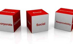 Nhận thức của người tiêu dùng về trách nhiệm xã hội của doanh nghiệp trong việc nộp thuế