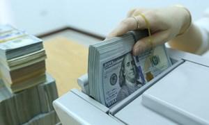 Lãi suất USD  liên ngân hàng có xu hướng giảm ở các kỳ hạn chủ chốt