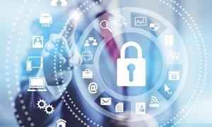 Công nghệ bảo hiểm kỳ vọng sẽ bứt phá trong năm mới