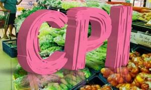 CPI tháng 1/2019 tăng 0,1% so với tháng 12/2018