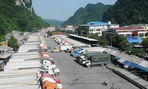 Doanh nghiệp nông sản cần chủ động giải pháp xuất nhập khẩu với Trung Quốc