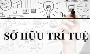 Thể chế hóa quyền sở hữu tài sản: Hạn chế trong thực thi quyền Sở hữu trí tuệ