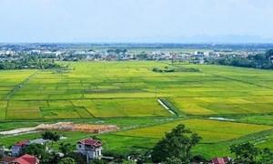 Xử phạt vi phạm hành chính trong lĩnh vực đất đai: Chưa đủ sức răn đe