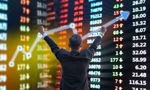 Tài khoản nhà đầu tư F0 tiếp tục đạt kỷ lục 86.107 tài khoản trong tháng 1/2021