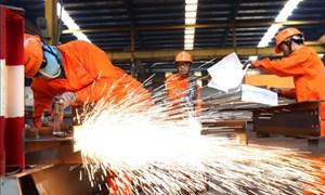 Bảo hiểm tai nạn lao động, bệnh nghề nghiệp: Hỗ trợ phòng ngừa, chia sẻ rủi ro