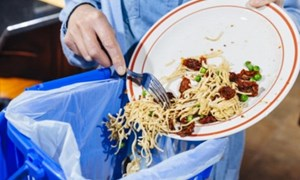 Thế giới lãng phí gần 1 tỷ tấn thực phẩm mỗi năm