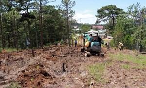 Phạt hành chính trong lĩnh vực đất đai: Có quy định nhưng chưa xử lý được