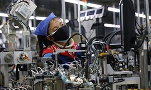 """Việt Nam đã đủ lực để thành """"công xưởng"""" thay Trung Quốc?"""