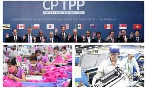 Doanh nghiệp cần tranh thủ lợi thế từ CPTPP