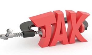 Bộ Tài chính đề xuất điều chỉnh mức thuế khoán từ 50% xuống 20%