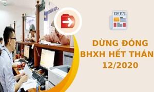 Quy định dừng đóng BHXH hết tháng 12/2020, những vấn đề cần lưu ý