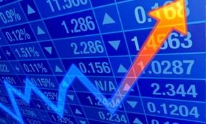 Sự trỗi dậy của dòng vốn nội cho những trận đánh