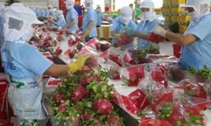 Từ 1/5/2019, trái cây xuất sang Trung Quốc phải đáp ứng yêu cầu bao bì