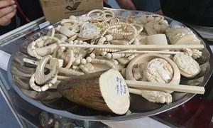 Phát hiện nhiều sản phẩm nghi chế tác từ ngà voi buôn lậu qua sân bay Nội Bài