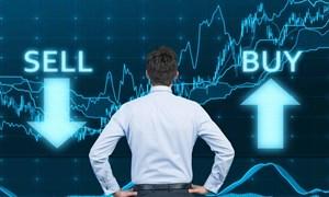 Thị trường chứng khoán hồi phục: Cơ hội song hành rủi ro