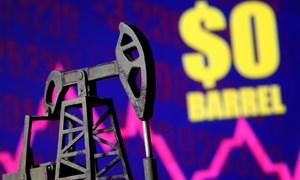 Vì sao giá dầu âm và triển vọng