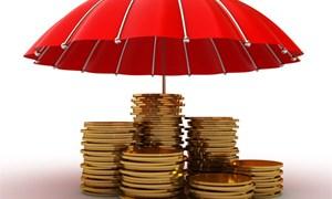 Vai trò của tổ chức bảo hiểm tiền gửi trong quá trình tái cơ cấu tổ chức tín dụng