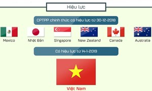 Doanh nghiệp Việt Nam cần chủ động nhiều hơn để tận dụng CPTPP