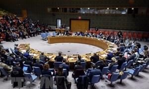 Việt Nam ủng hộ giải quyết các thách thức về khủng bố tại châu Phi