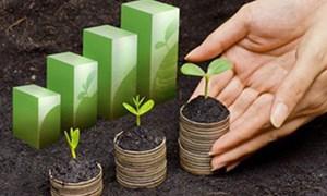 4 tháng, doanh nghiệp bảo hiểm đầu tư 328,7 nghìn tỷ đồng vào nền kinh tế