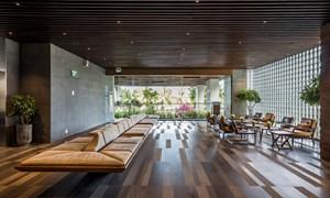 Cây và hoa phủ kín ban công khách sạn 21 tầng ở Đà Nẵng