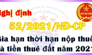 Trách nhiệm của cơ quan thuế trong triển khai Nghị định số 52/2021/NĐ-CP