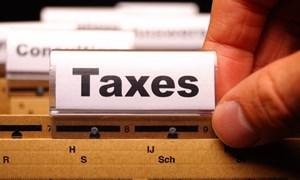 Quy trình xử lý đề nghị gia hạn nộp thuế, nộp tiền thuê đất năm 2021