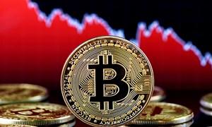 """Bitcoin và thị trường tiền điện tử """"sụp đổ"""" do đâu?"""