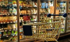 Hệ thống điểm bán lẻ hàng tiêu dùng thiết yếu của doanh nghiệp Việt Nam ở khu vực nông thôn đồng bằng sông Hồng