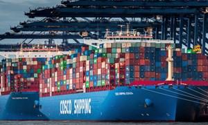 Anh muốn giảm phụ thuộc vào Trung Quốc về các mặt hàng nhập khẩu chiến lược