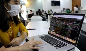 Dòng tiền của nhà đầu tư F0 vẫn chảy mạnh?