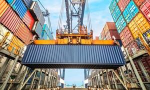 Thế giới sẽ tiếp tục thiếu hụt nguồn cung ứng?
