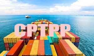 Thực hiện các cam kết Hiệp định CPTPP trong lĩnh vực hải quan