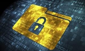 Bảo mật dữ liệu trong bối cảnh thanh toán không tiếp xúc gia tăng